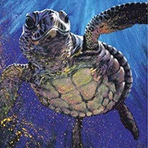 Sea turtle blanket 60 x 80 inches